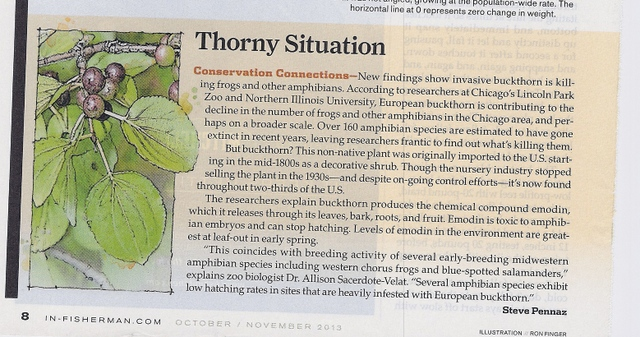 Thorny-Situation